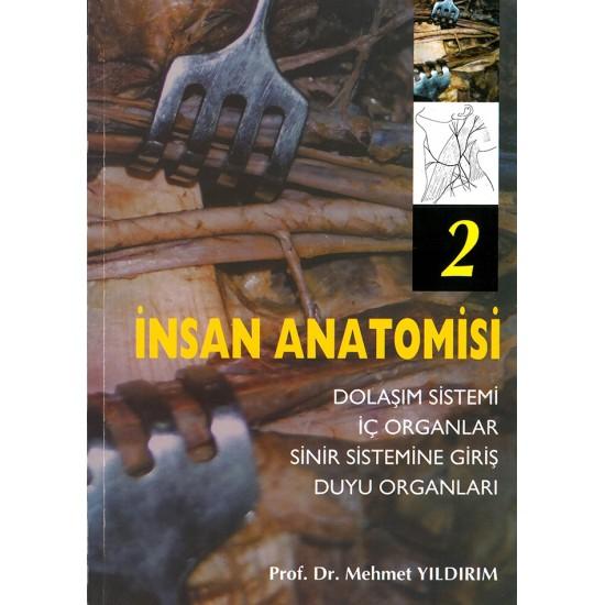 İnsan Anatomisi 2 Dolaşım Sistemi - İç Organlar - Sinir Sistemine Giriş - Duyu Organları