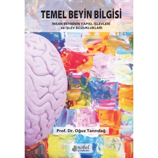 Temel Beyin Bilgisi: İnsan Beyninin Yapısı, İşlevleri ve İşlev Bozuklukları